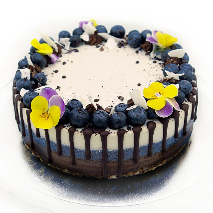 Raw Chocolate Blueberry Coconut Cake