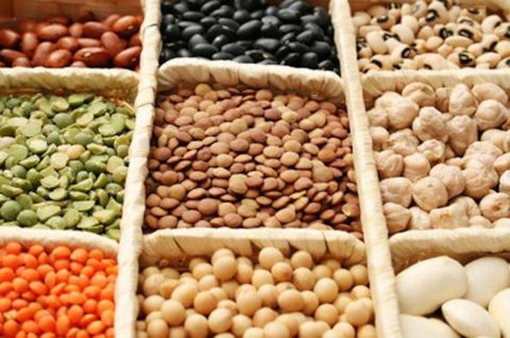 Plant Foods Have a Complete Amino Acid Composition