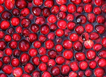Cranberries: The Ultimate Health Food
