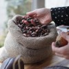 100% No Sugar Chocolate | Solomon Island Chocolate Bar | Vegan, Plant Based, Antioxidant, Ethical | Plastic-Free & Compostable | (bundle of 3)