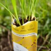 Home Compostable Packaging