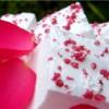 Rose Artisan Marshmallows