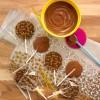 Bumblebee Chocolate Lollipop Kit