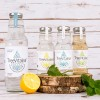 TreeVitalise Birch Water - the Organic family