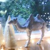 silver camel christmas table decoration