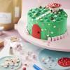 The Enchanted Fairy Garden Cake Kit