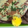 close up camouflage chocolate easter egg cocoapod