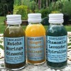 Superfood Drinks Selection Pack: 3 Flavours (20 bottles)