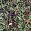 09 Ruby Mint - Herbs