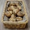16 Gluten Free Artisan Sourdough Bold Buckwheat Rolls