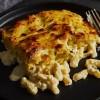 Fresh pasta lasagne