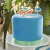 dinosaur cake candles