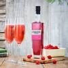 Sugar Free Pinkster Royale Raspberry Liqueur