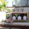 The Old Curiosity Gin Gift Set (3x4cl)