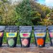 Raw Rainbow Kimchi Pack (7x300)