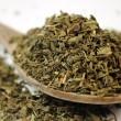 Minty Fresh Gunpowder Green Tea