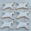 Unicorn Iced Cookies