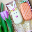 Bunny & Carrot Cake Popsicles