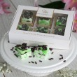 Mint & Dark Chocolate Marshmallows Gift Box