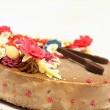Organic Rawzelnut cake