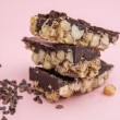 'Nutty Collector' Nut Bar with 70% Cacao Chocolate