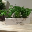 Windowsill Herb planter