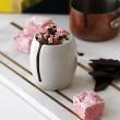 Gourmet Marshmallows & Hot Chocolate Gift Set