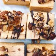 Bitesize Nutty Peanut Butter Cheesecake Slice