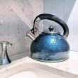 Whistling Stove Top Kettle in White, Silver or Blue - Hex Design
