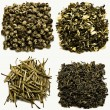 Chinese Green Tea Taster Collection