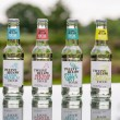 Twelve Below - Natural Low Sugar Tonics Sample Pack (mixed case of 12)