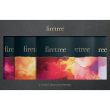 The Firetree Collection - 5 Bar Chocolate Gift Box