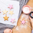 Fairy Wand Biscuit Kit