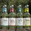Natural Low Sugar Tonics Mixed Case 500ML (Mixed Case of 8)