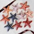 Vegan White Chocolate Starfish Collection