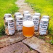 Everyday Pale Ale Lower Alcohol Craft Beer 3.8% ABV (10 Cans)
