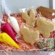 DIY Biscuit Decorating Kit