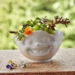 'Laughing' Porcelain Bowl with flowers
