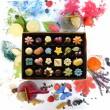 24 beautiful handmade vegan chocolates