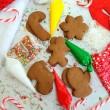Christmas DIY Biscuit Decorating Kit