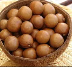 Have You Discovered The Health Benefits of Macadamia Nuts?