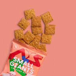 Cricket-Cracker-Bites-tomato-Oregano-edible-insect-high-protein-healthy-snack-powder-vitamin-hamper-gift-flatbread-crisp