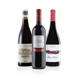 Spanish Red Wine Gift Selection