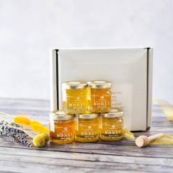 Mild Honey Taster Set - 5 Beautiful Sampler Jars & Mini Honey Dipper