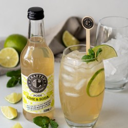 Crafted Posh Lime & Soda (12 x 330ml)