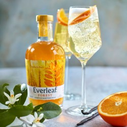 Everleaf Forest - Non-Alcoholic Complex & Bittersweet Aperitif, 50cl