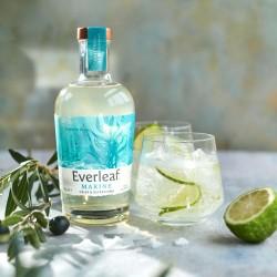 Everleaf MARINE - Non-Alcoholic Complex & Bittersweet Aperitif, 50cl