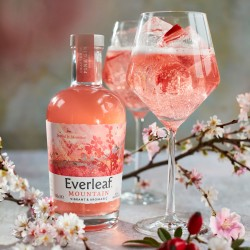 Everleaf Mountain - Non-Alcoholic Vibrant & Aromatic Aperitif, 50cl