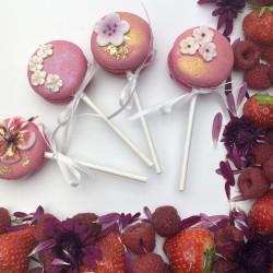 Macaron Pop Cookies Box