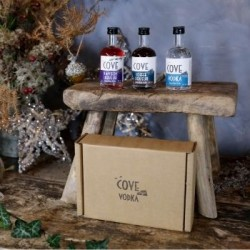 Luxury Cove Vodka and Liqueurs Miniatures Gift Set